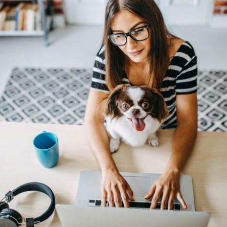 Una mujer buscando empleo online