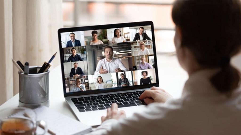 Seminario por Skype